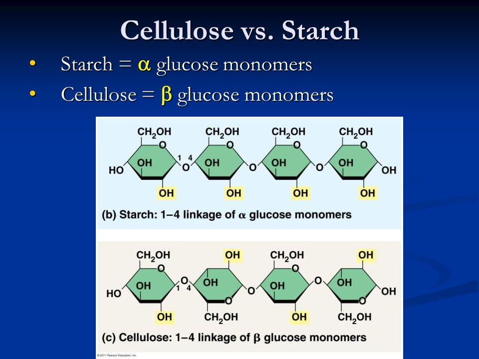 Cellulose vs. Starch Starch =  glucose monomers