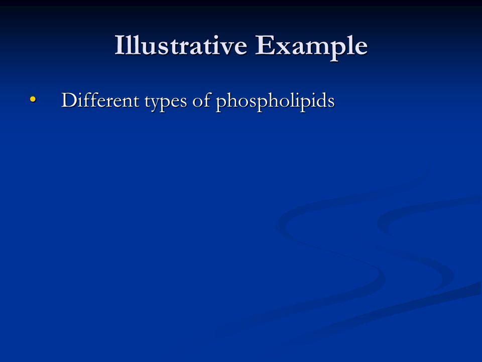 Illustrative Example Different types of phospholipids