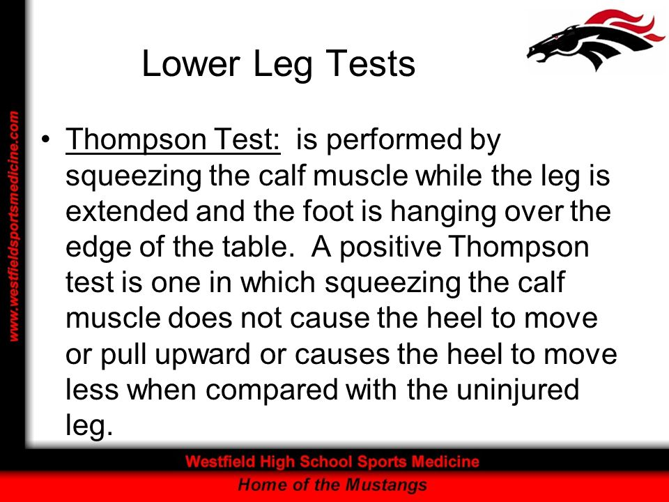 Lower Leg Tests