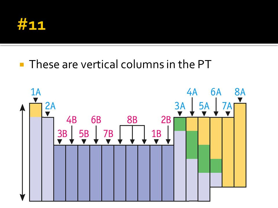 #11 These are vertical columns in the PT