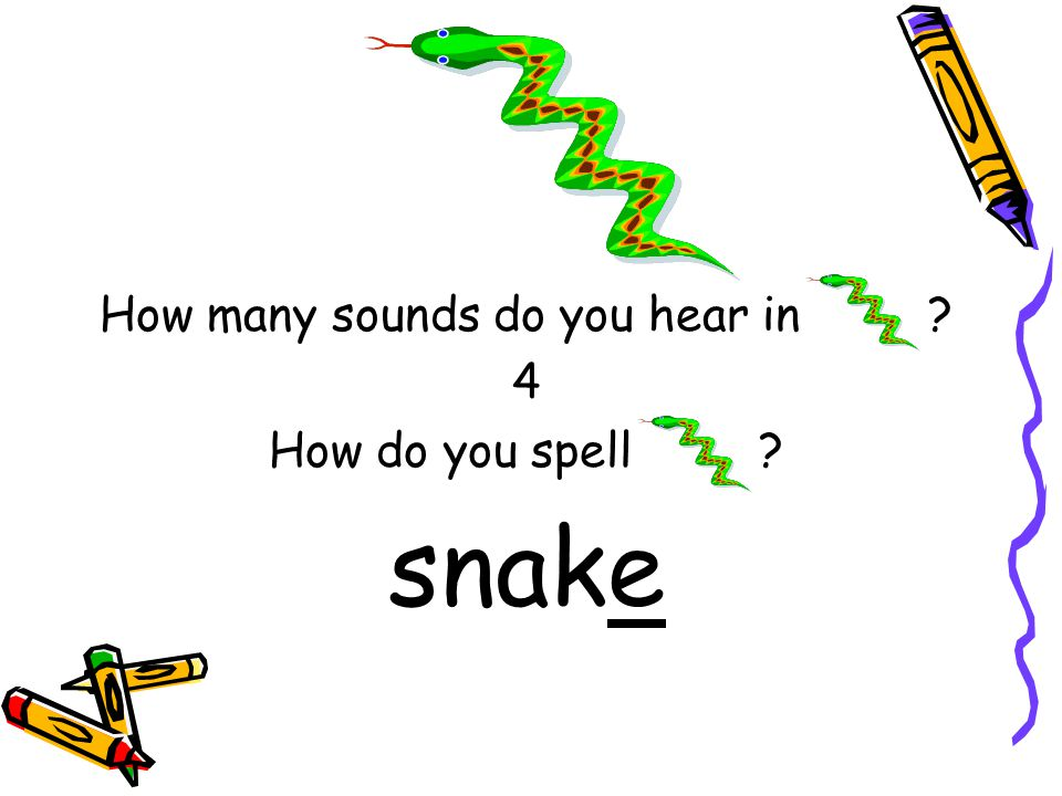 How many sounds do you hear in