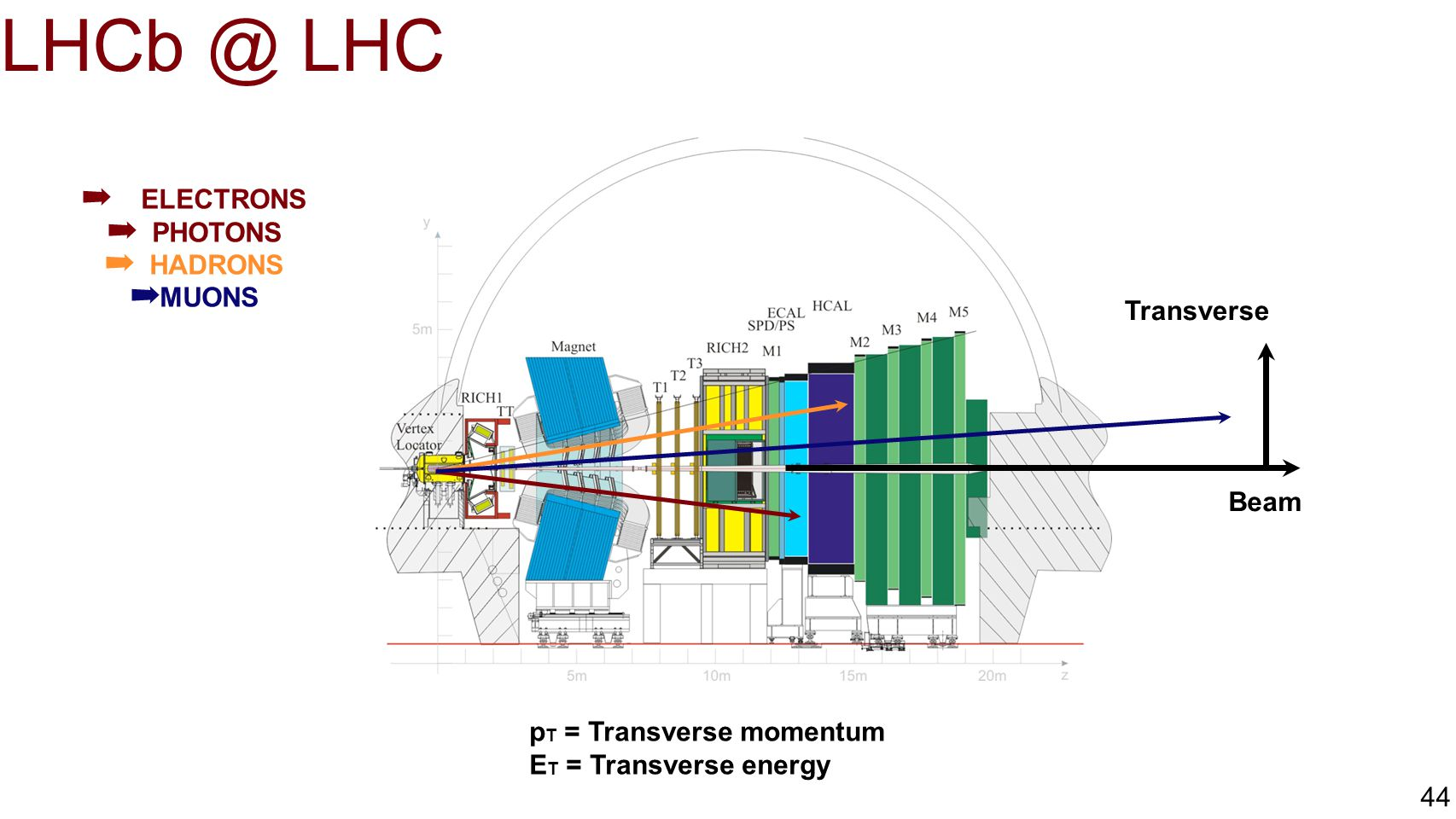 LHCb @ LHC ELECTRONS PHOTONS HADRONS MUONS Transverse Beam