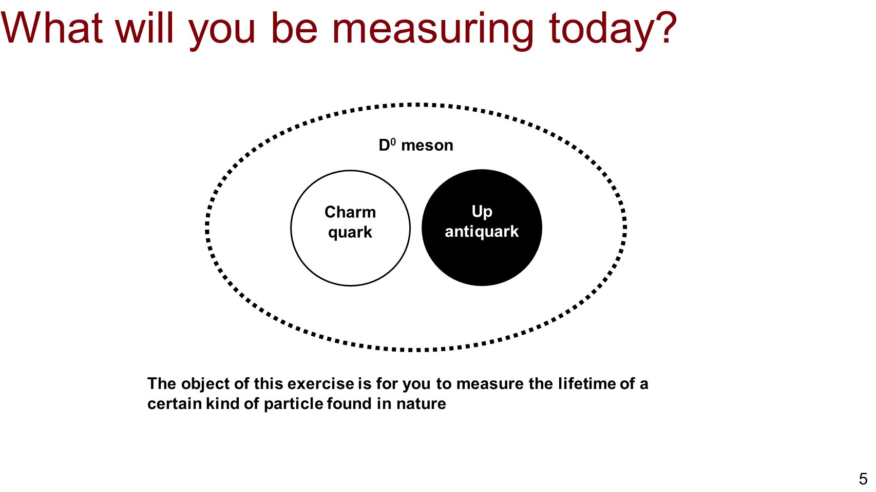 What will you be measuring today