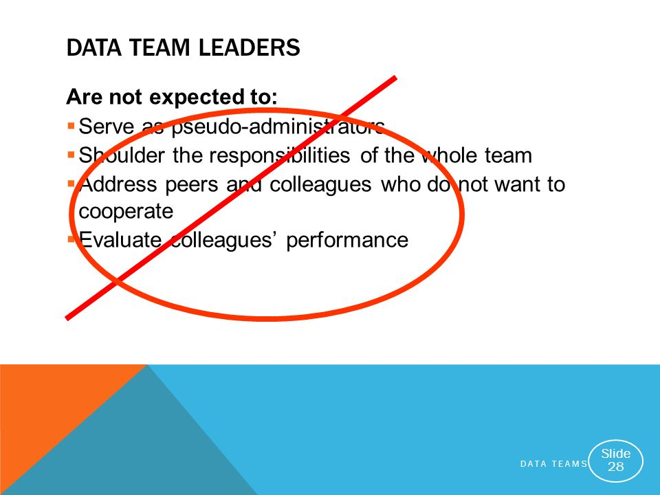 Data Team Leaders Are not expected to: Serve as pseudo-administrators