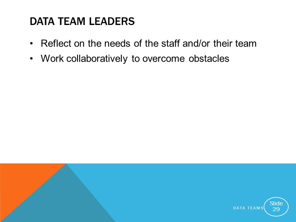 Data Team Leaders Reflect on the needs of the staff and/or their team