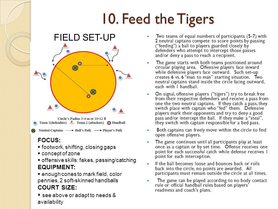 10. Feed the Tigers FIELD SET-UP FOCUS: EQUIPMENT: COURT SIZE: