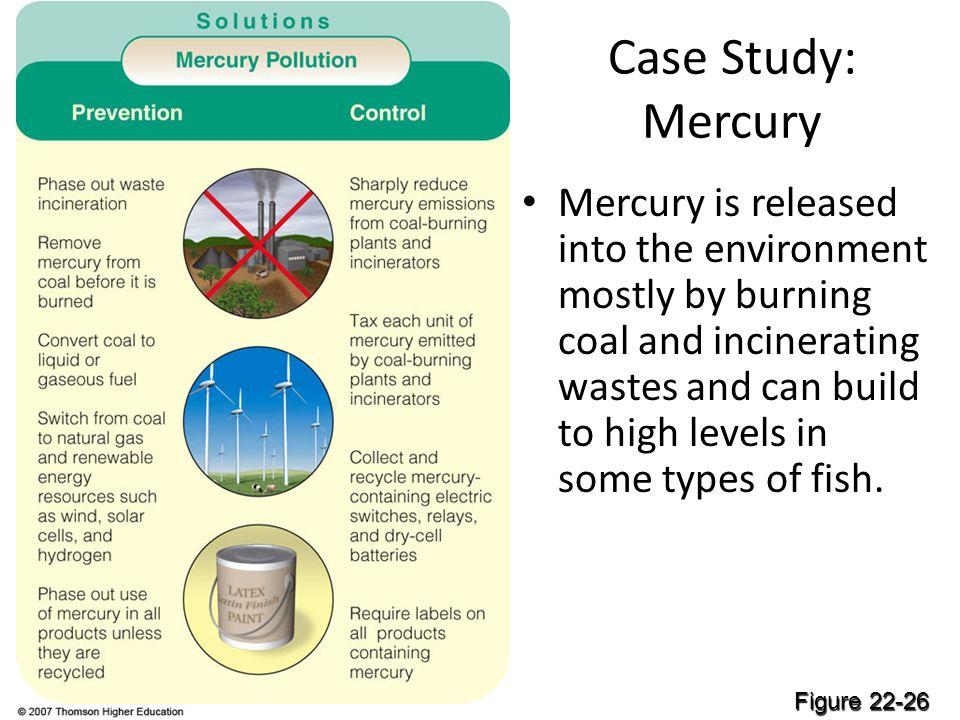 Case Study: Mercury