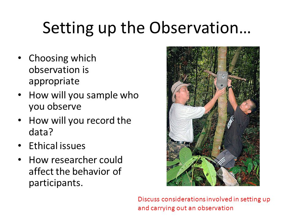 Setting up the Observation…