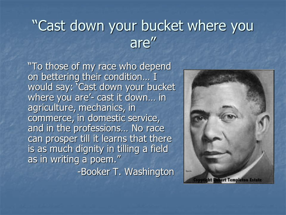 Cast down your bucket where you are