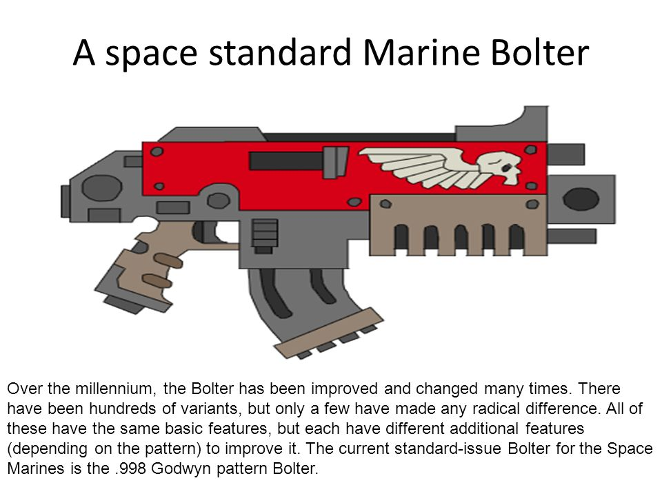 A space standard Marine Bolter