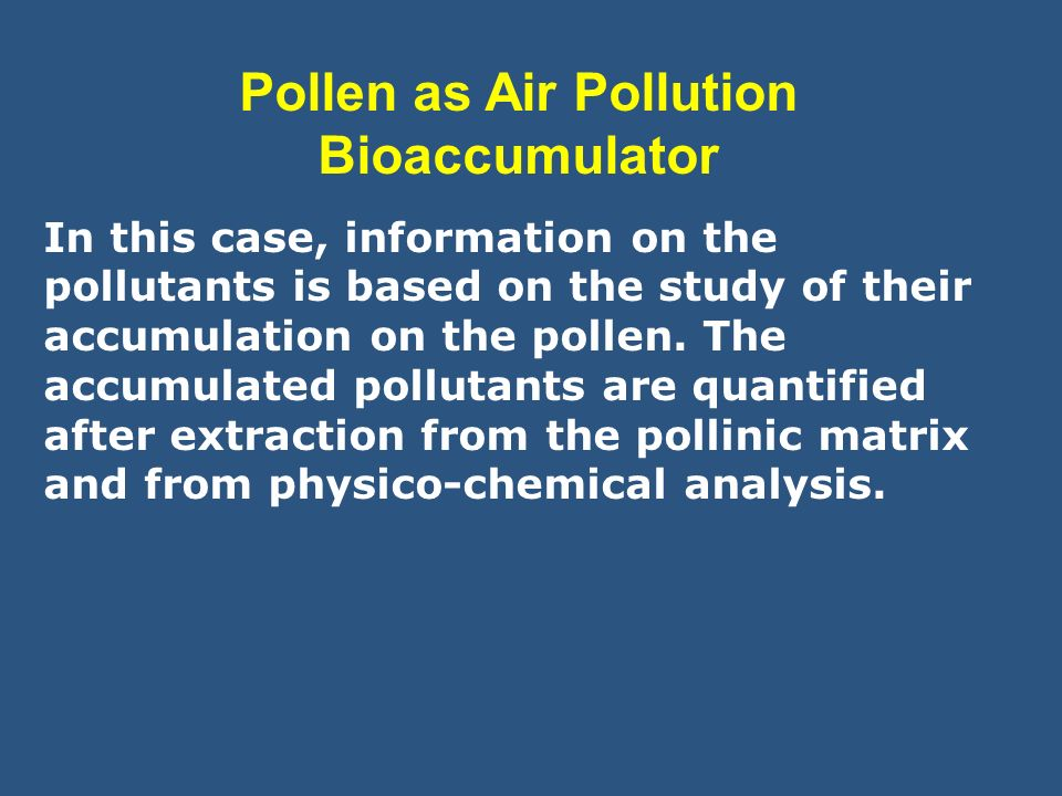 Pollen as Air Pollution Bioaccumulator