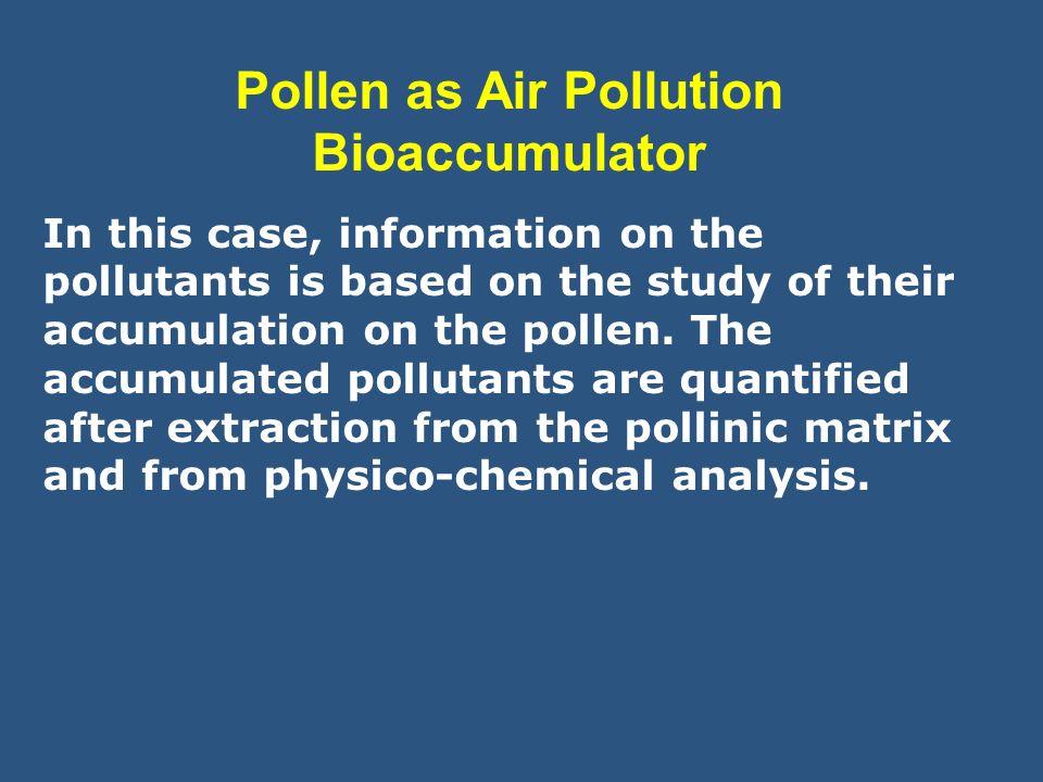 Pollen as Air Pollution Bioaccumulator