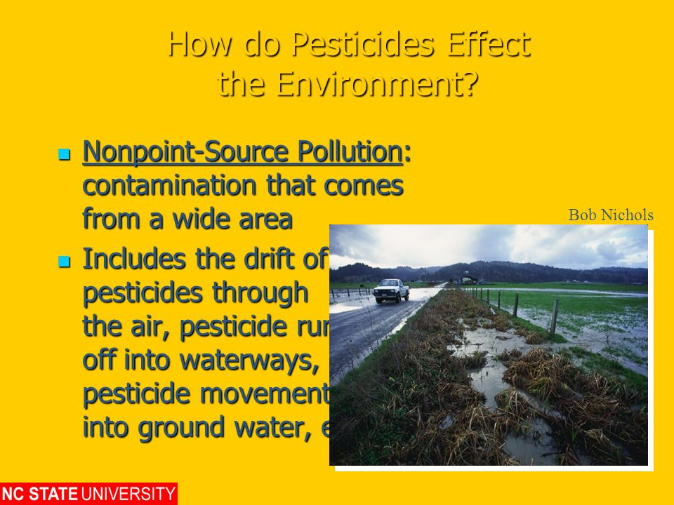 How do Pesticides Effect the Environment