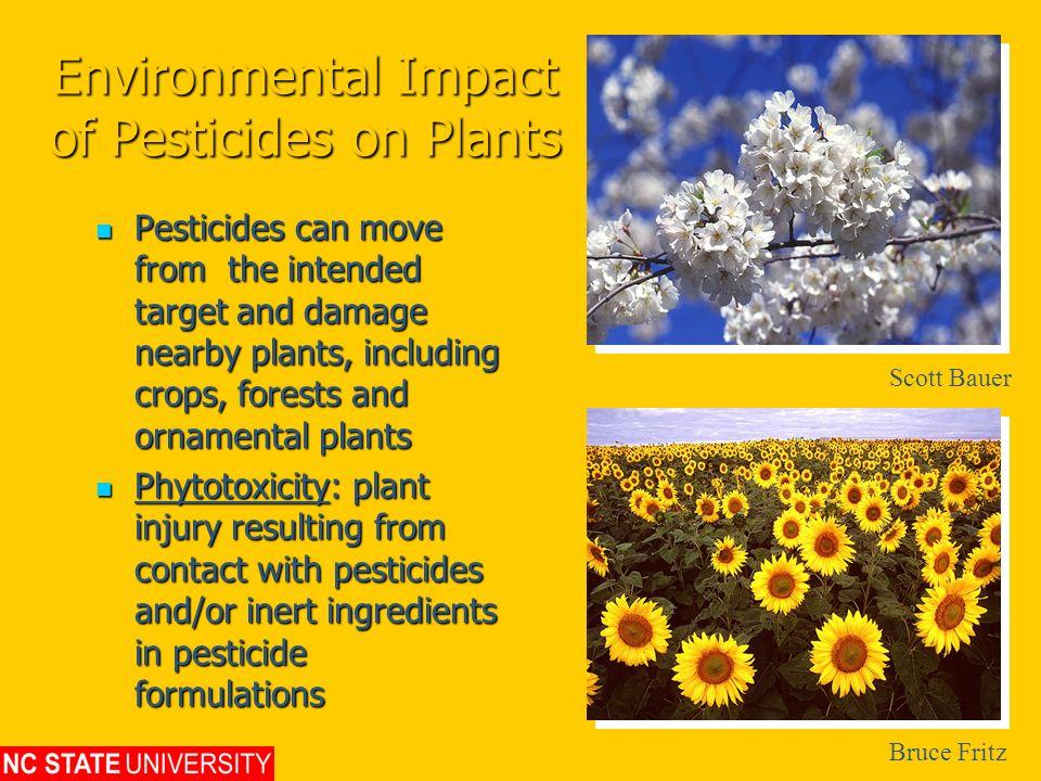 Environmental Impact of Pesticides on Plants