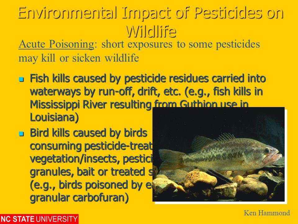 Environmental Impact of Pesticides on Wildlife