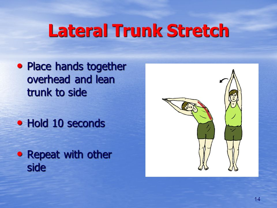 Lateral Trunk Stretch Place hands together overhead and lean trunk to side.