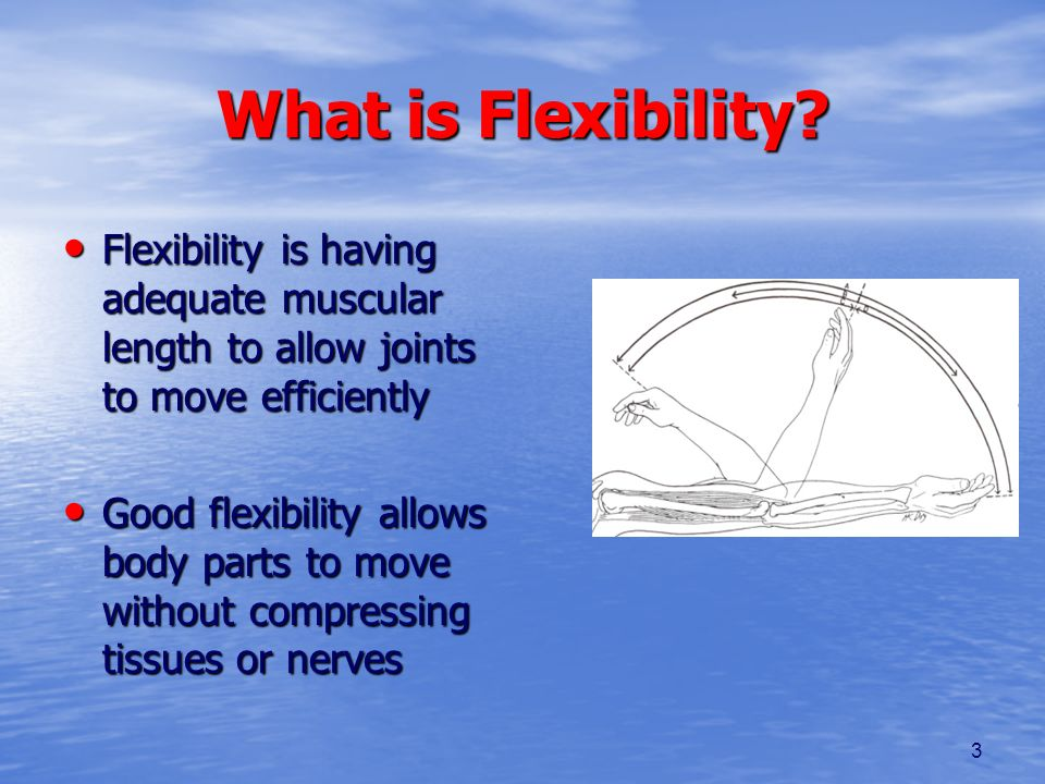 What is Flexibility Flexibility is having adequate muscular length to allow joints to move efficiently.