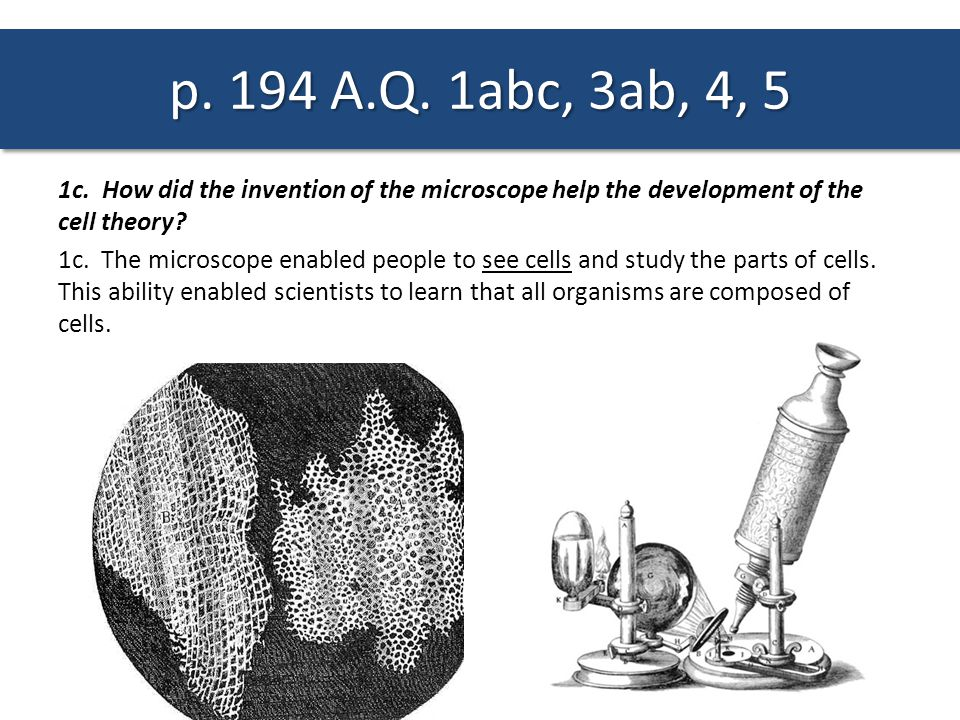 p. 194 A.Q. 1abc, 3ab, 4, 5 1c. How did the invention of the microscope help the development of the cell theory