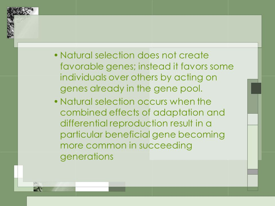 Natural selection does not create favorable genes; instead it favors some individuals over others by acting on genes already in the gene pool.