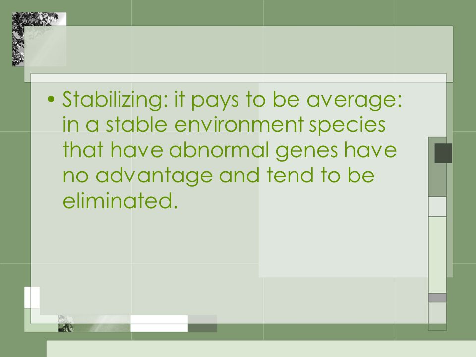 Stabilizing: it pays to be average: in a stable environment species that have abnormal genes have no advantage and tend to be eliminated.