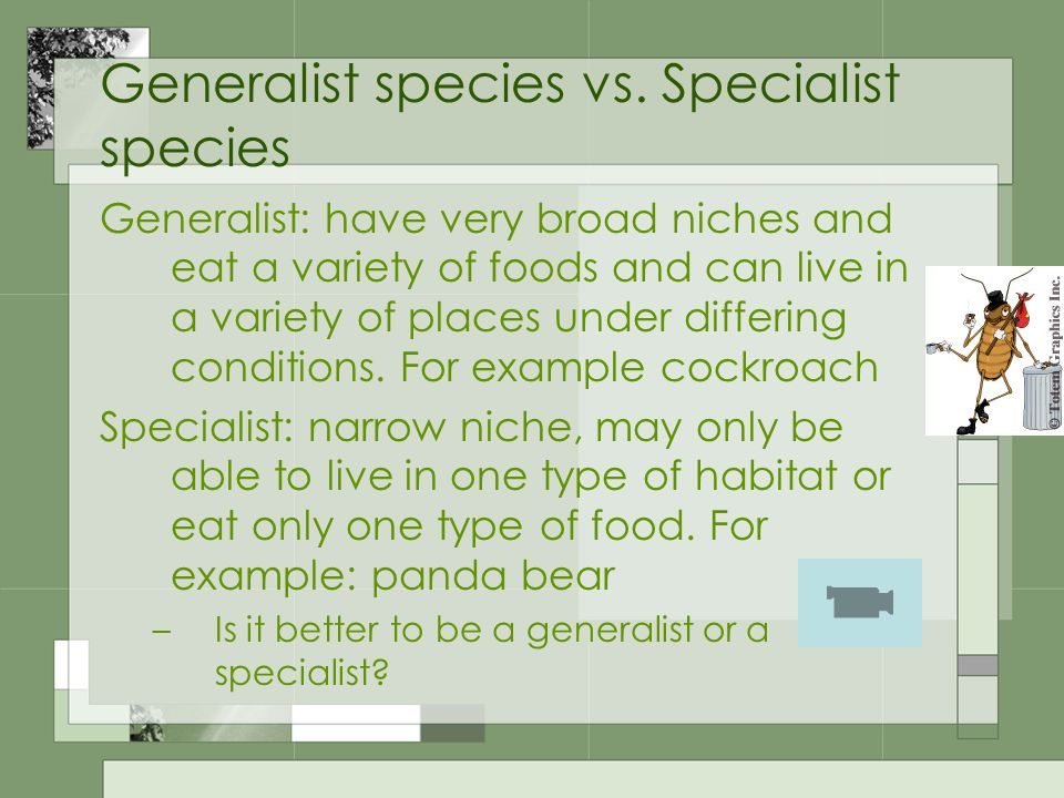 Generalist species vs. Specialist species
