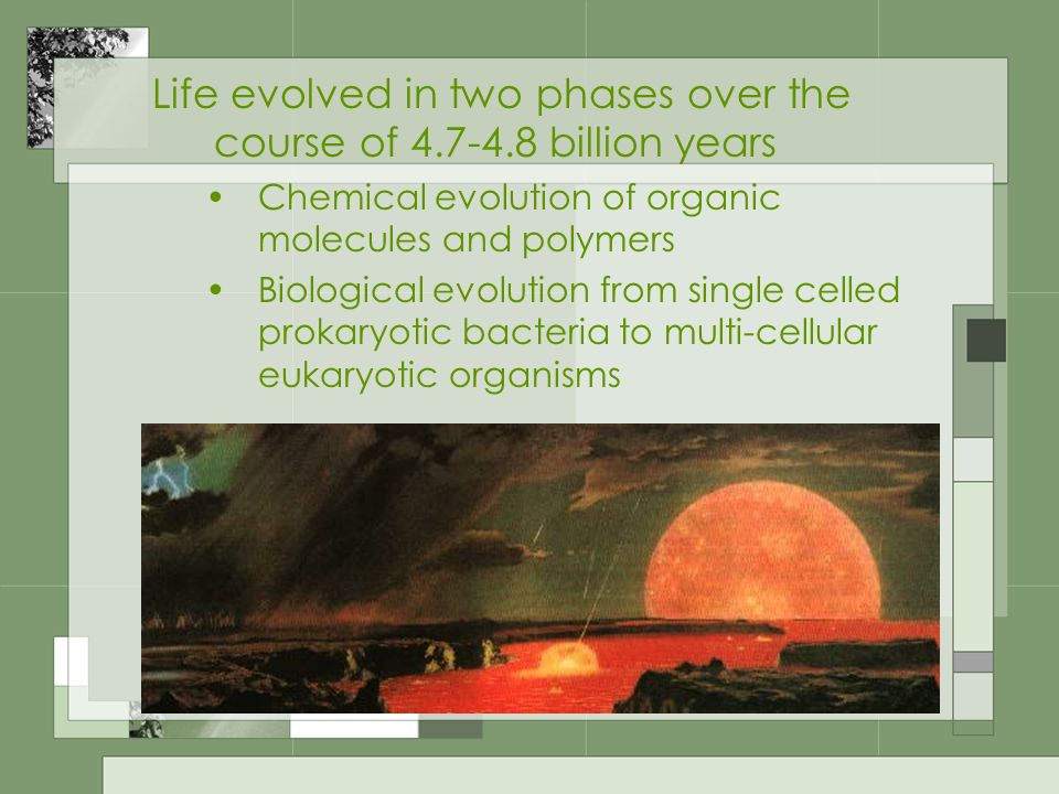 Life evolved in two phases over the course of 4.7-4.8 billion years
