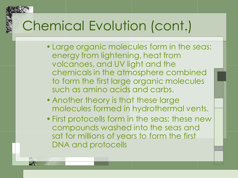 Chemical Evolution (cont.)