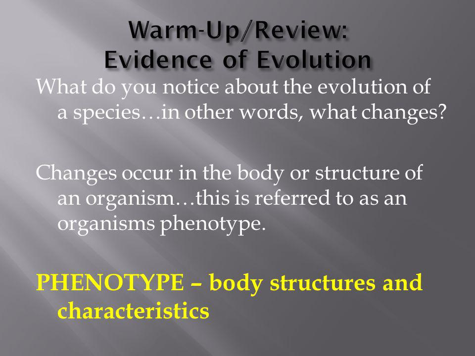Warm-Up/Review: Evidence of Evolution