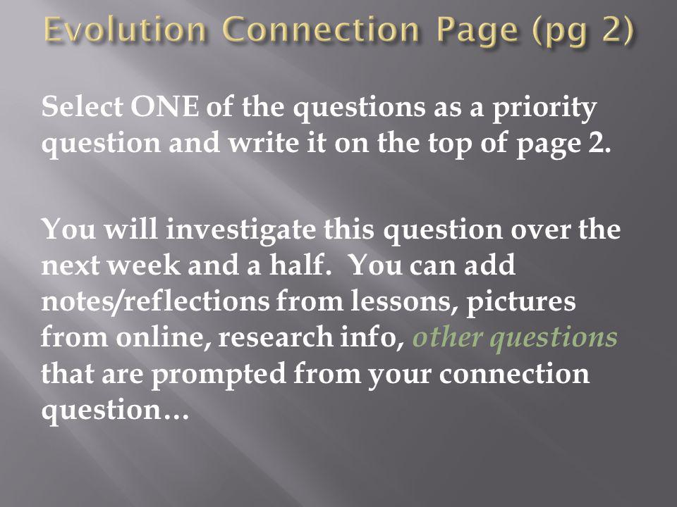 Evolution Connection Page (pg 2)