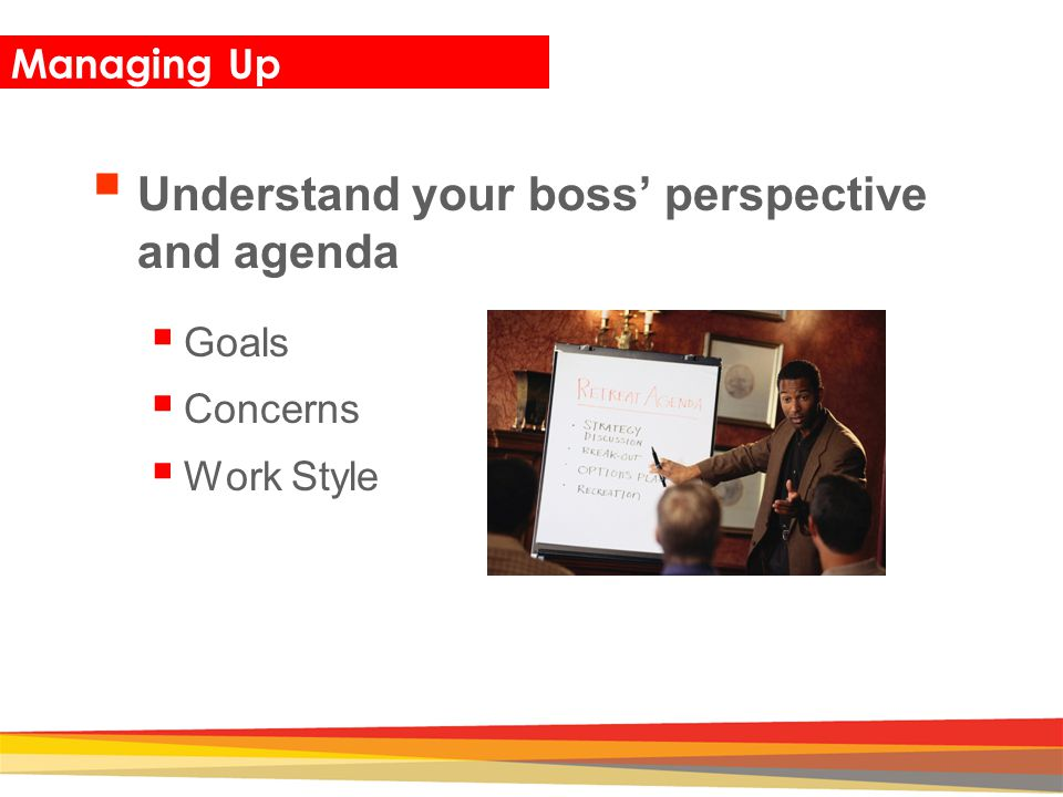 Understand your boss' perspective and agenda