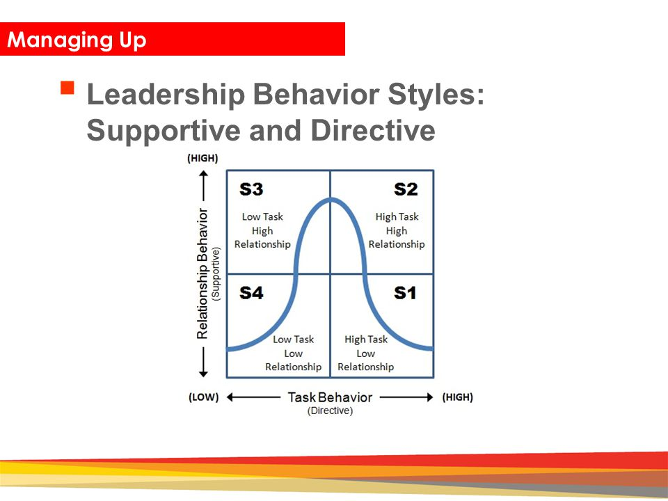 Leadership Behavior Styles: Supportive and Directive