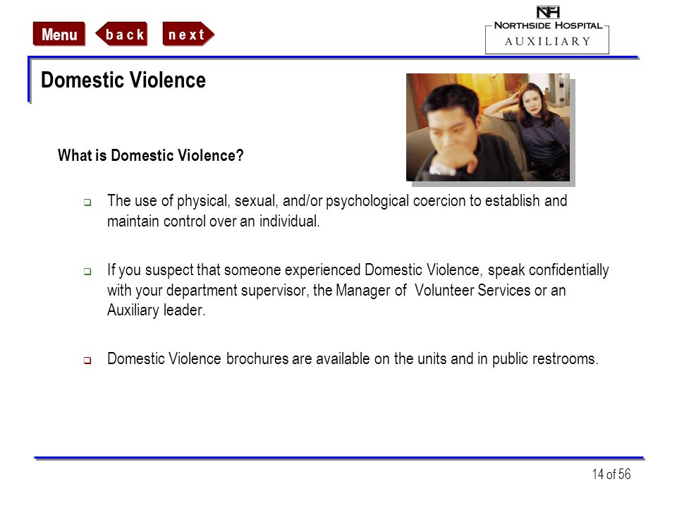Domestic Violence What is Domestic Violence