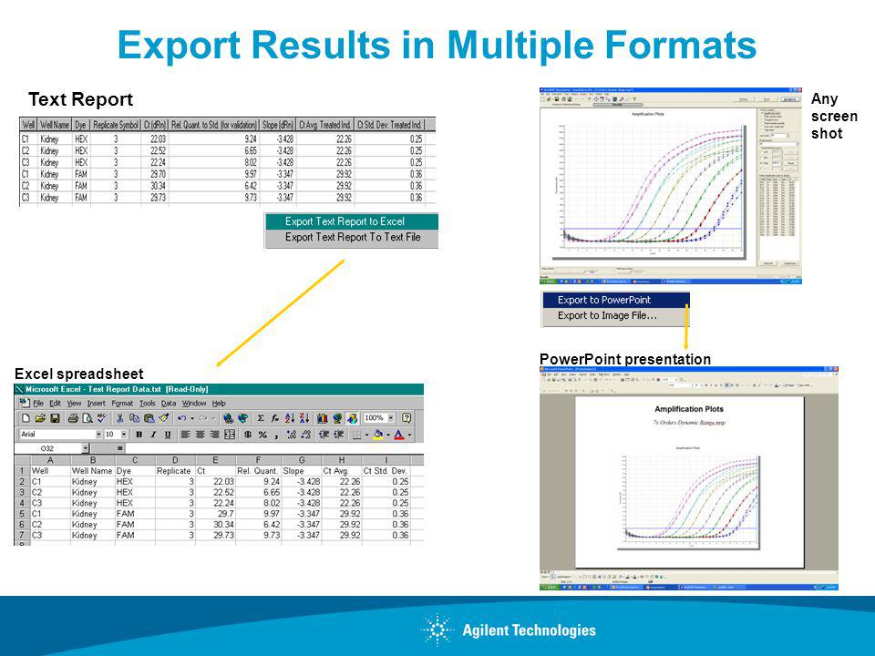 Export Results in Multiple Formats