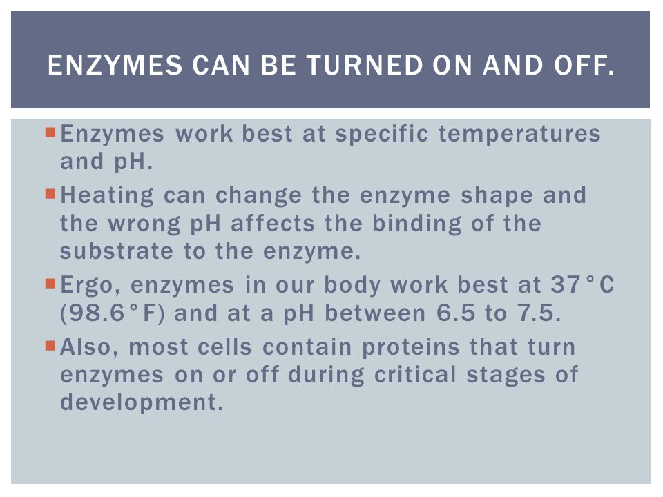 Enzymes can be turned on and off.