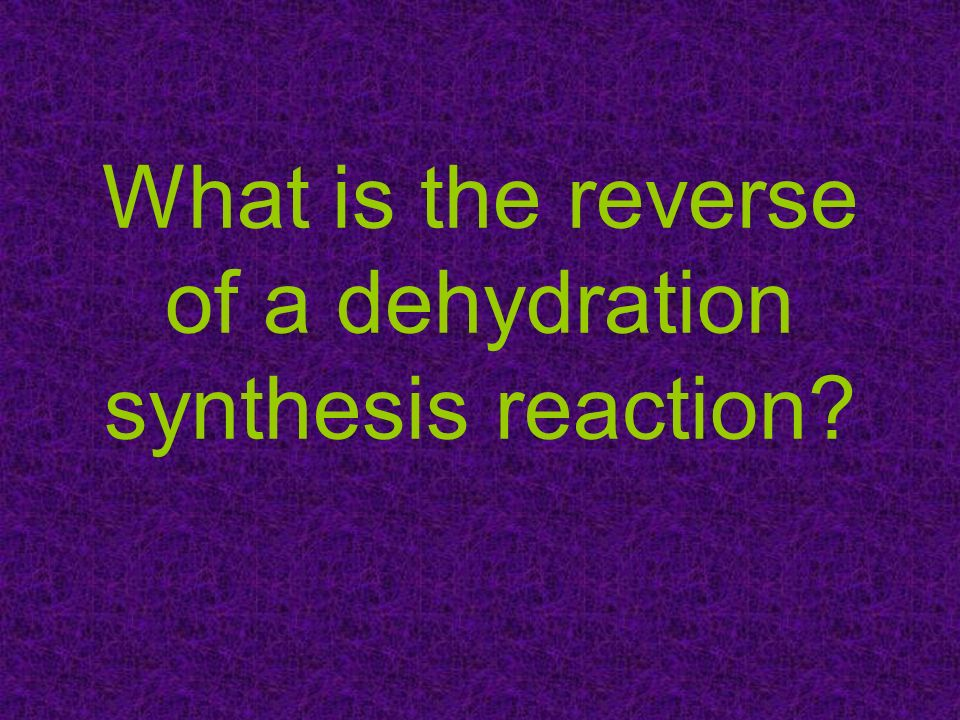 What is the reverse of a dehydration synthesis reaction