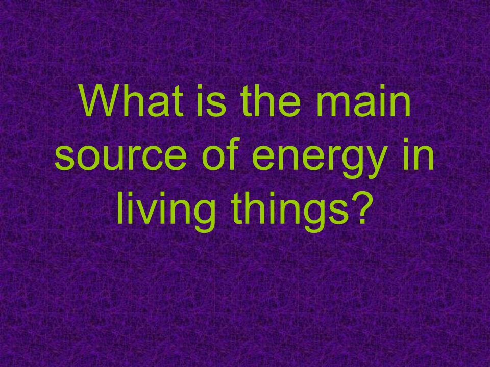 What is the main source of energy in living things