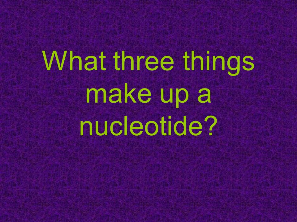 What three things make up a nucleotide