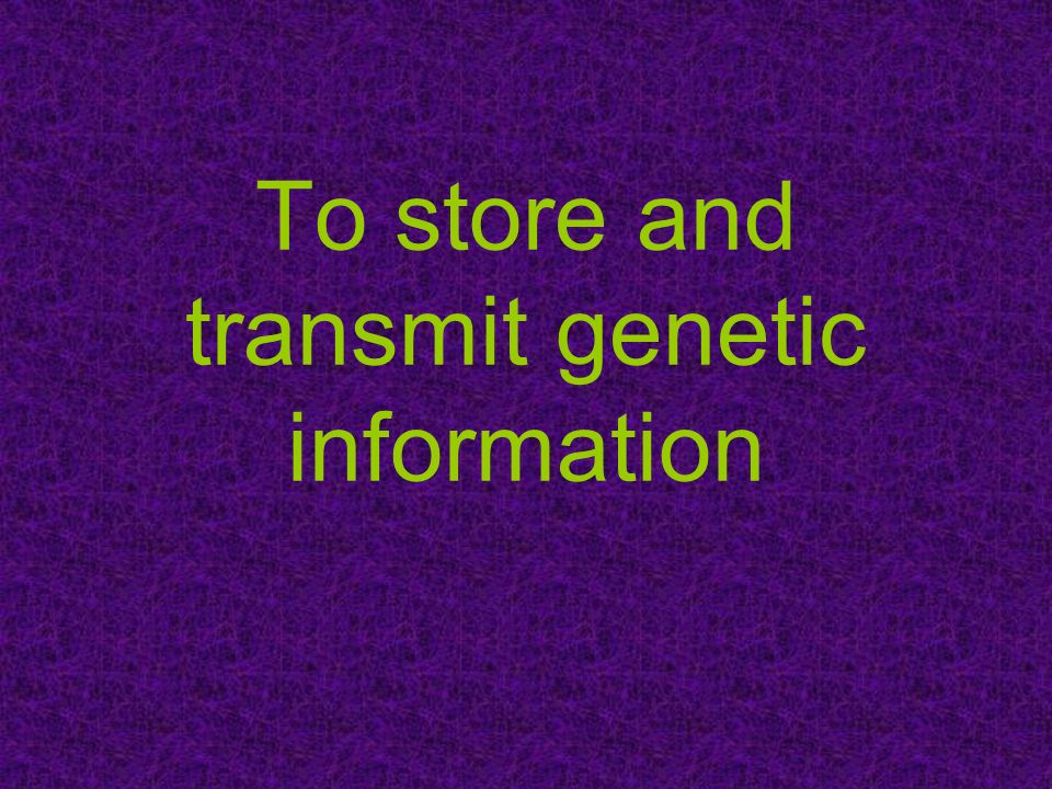 To store and transmit genetic information