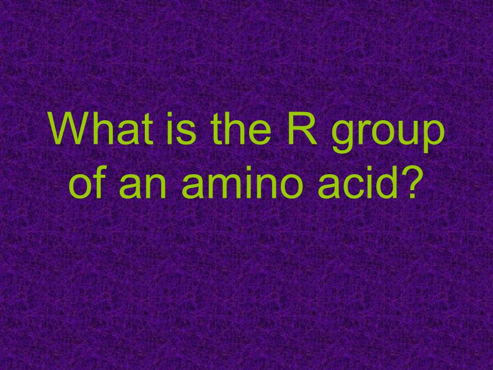 What is the R group of an amino acid