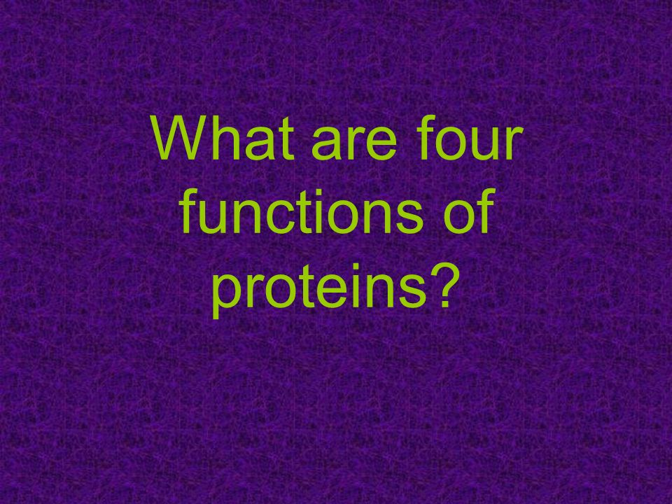 What are four functions of proteins