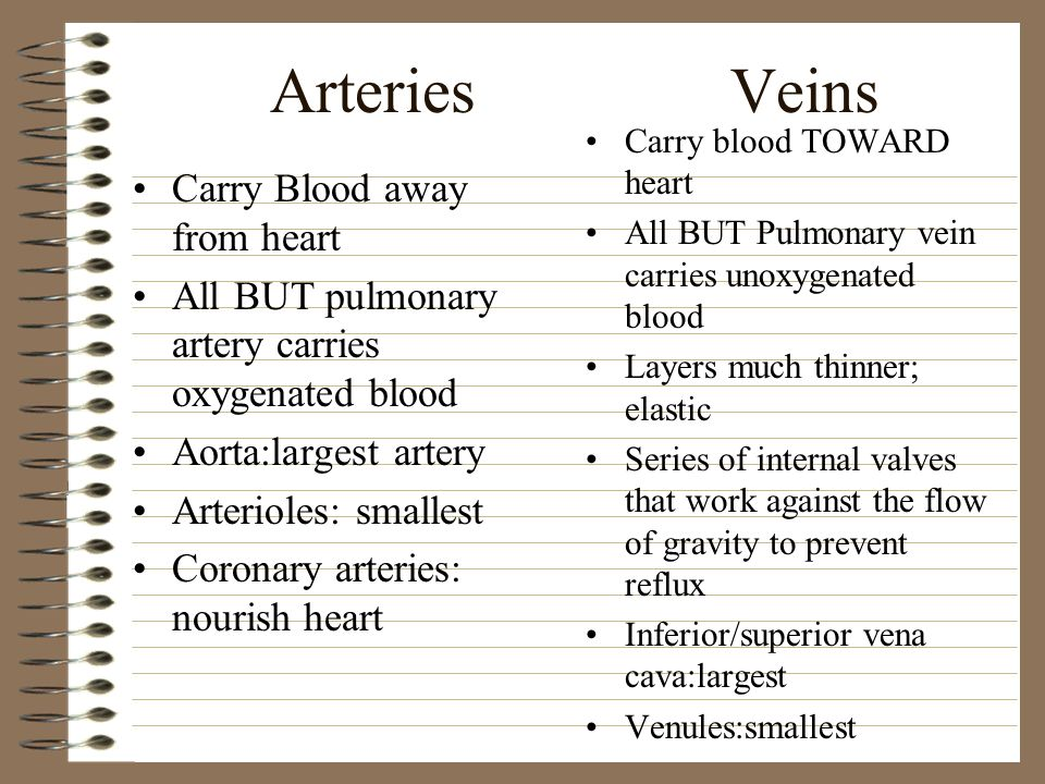 Arteries Veins Carry Blood away from heart