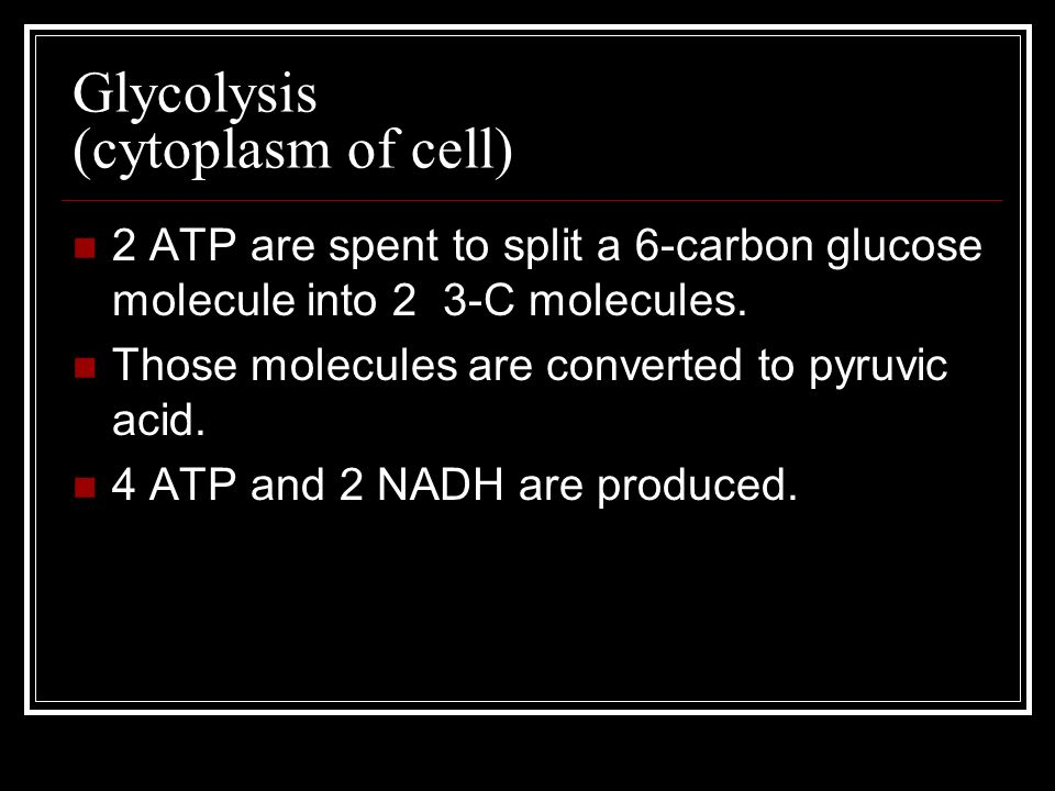 Glycolysis (cytoplasm of cell)