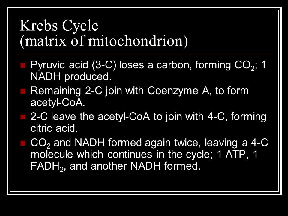 Krebs Cycle (matrix of mitochondrion)