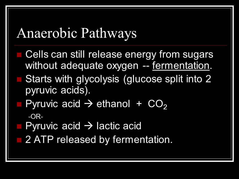 Anaerobic Pathways Cells can still release energy from sugars without adequate oxygen -- fermentation.