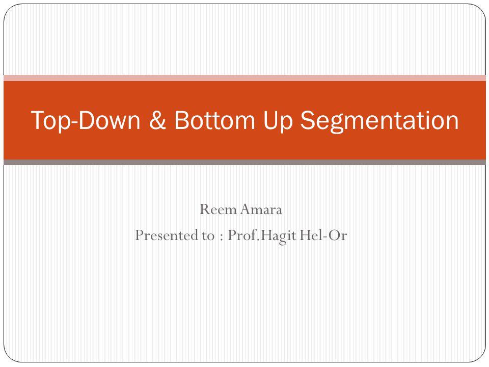 Top-Down & Bottom Up Segmentation