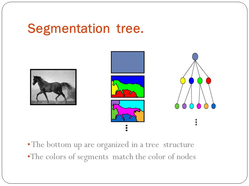 Segmentation tree. The bottom up are organized in a tree structure