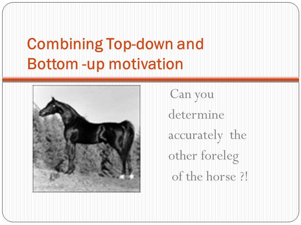 Combining Top-down and Bottom -up motivation