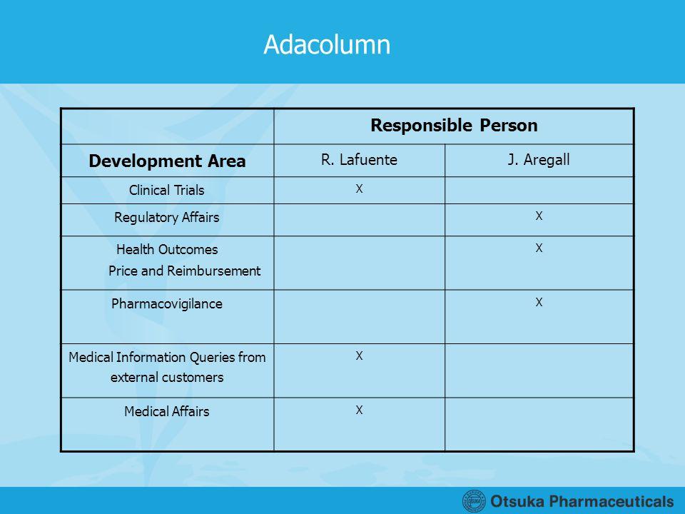 Adacolumn Responsible Person Development Area R. Lafuente J. Aregall