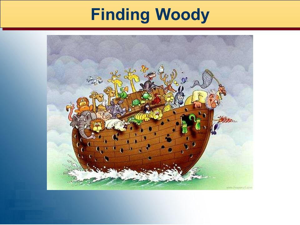 Finding Woody