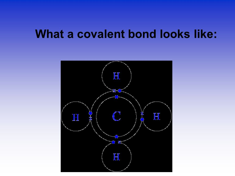What a covalent bond looks like: